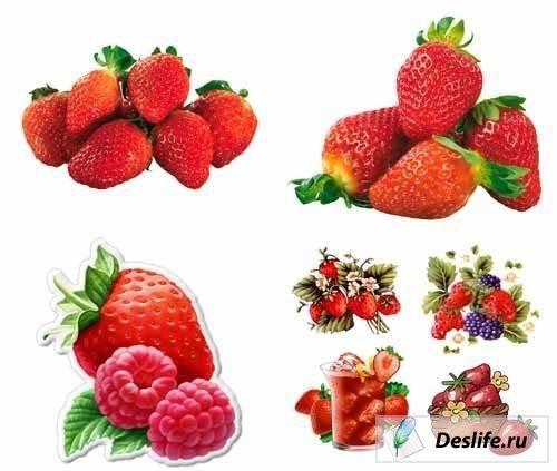 Strawberries pack - Клипарт