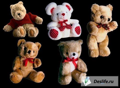 Медвежата - Клипарт мягких игрушек