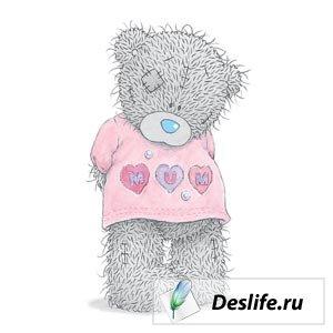 Teddy Bear - Картинки