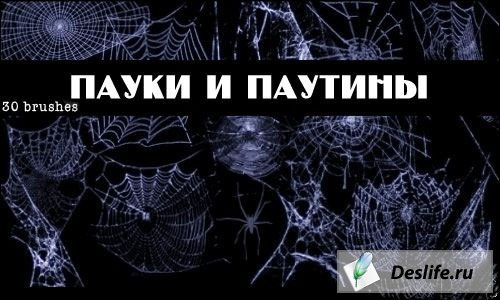 Пауки и паутины - Кисти