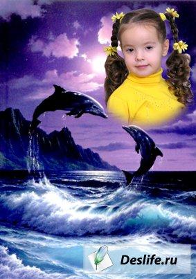 Радость с дельфинами