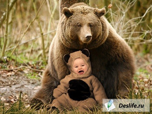 Медвежонок - Костюм для Photoshop
