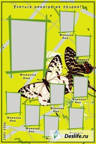 Жёлтая виньетка с бабочками