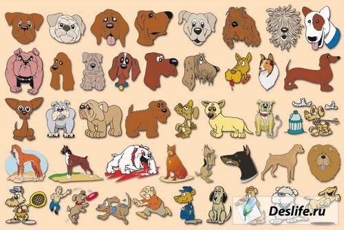 Собаки в векторе
