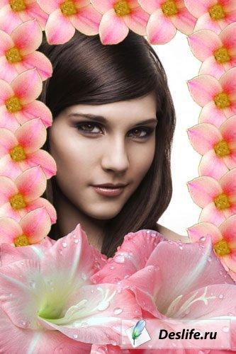 Рамочка для фотошопа «В Цветах»