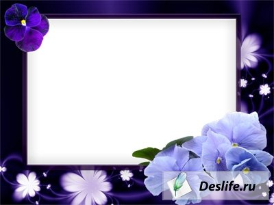 Фиолетовые анютины глазки - Рамка для фото