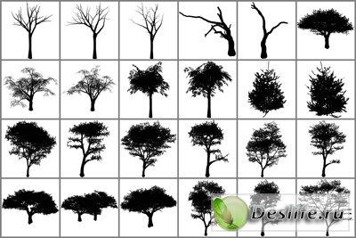 Кисти для фотошопа - Деревья