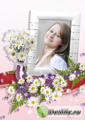 Цветы для тебя. Ромашки - Рамочка для фотошопа