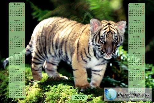 Календарь с тигрёнком