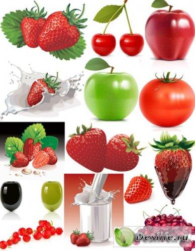 Фрукты и ягоды - Векторные клипарты
