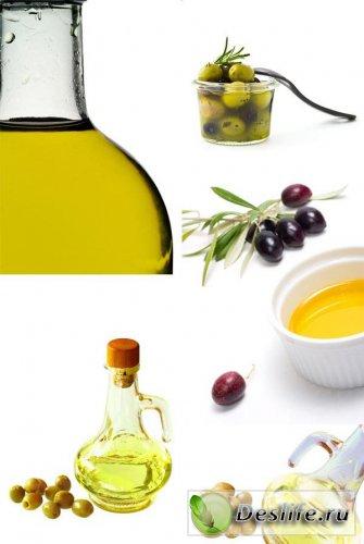 Оливки и Оливковое масло - Растровый клипарт