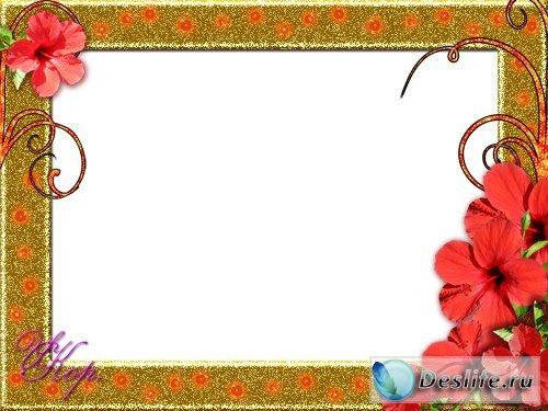 Цветы в золоте - Рамка для фотошопа