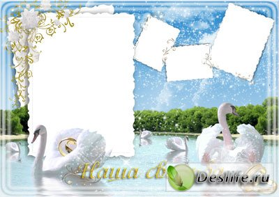 Свадебные лебеди - Рамка для фотошопа