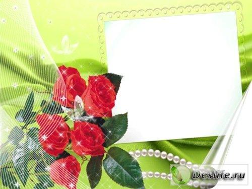 Розы под вуалью рамка для фотошопа