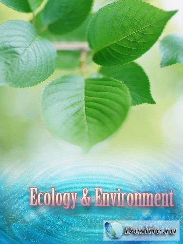 Экология и окружающая среда - Растровый КлипАрт