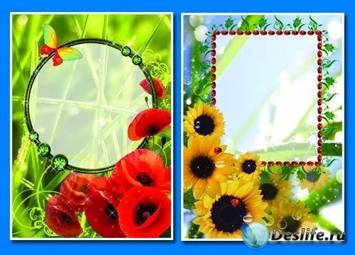 Маки и подсолнухи - Летние рамочки для фотошопа