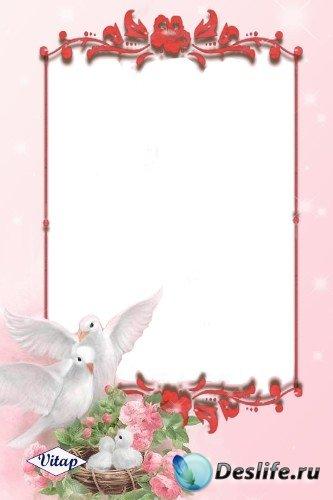 Рамка для фотошоп – Семья голубков