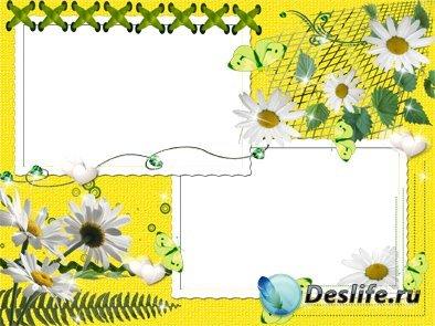 Бабочки и ромашки - Рамка для фотошопа