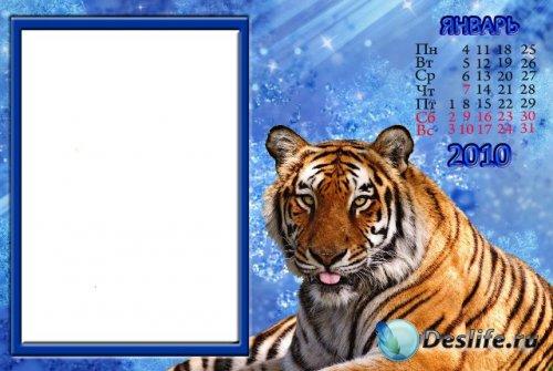 Календарь на январь 2010 с тигром