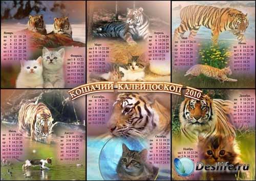 Календарь на 2010 год - Кошачий калейдоскоп