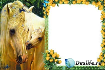 Рамочка для фотошопа - Чудо лошадки