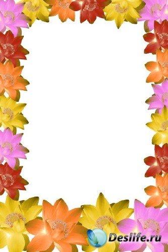 Рамка для фотошопа – В цветах