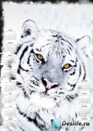 Красивый календарь 2010 - Тигрица