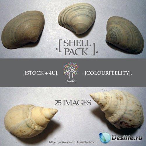 Клипарт - Ракушки (Shell pack)