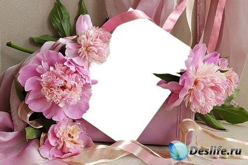 Рамка для фотошоп – Розовые пионы