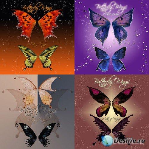 Butterfly Wings - Крылья бабочек