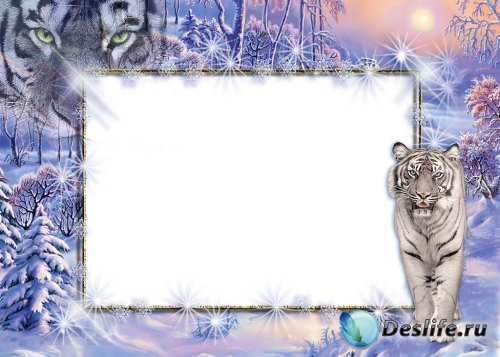 Рамка для фотошопа – Зимняя с белым тигром