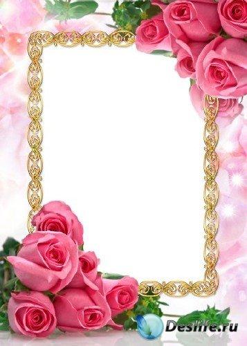 Рамка для фотошоп – Розовые розы