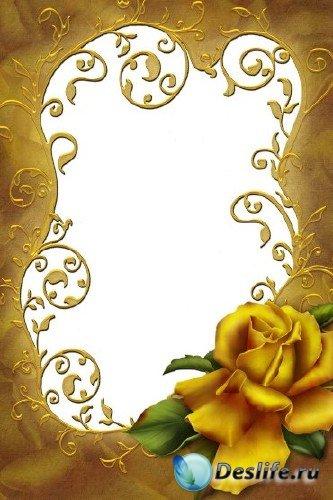 Рамка для фотошоп – Золотая роза
