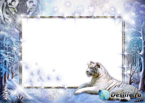Рамочка для фотошопа – Зимняя с тигром-2