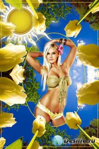 Рамка для фотошоп - Тюльпаны на солнце