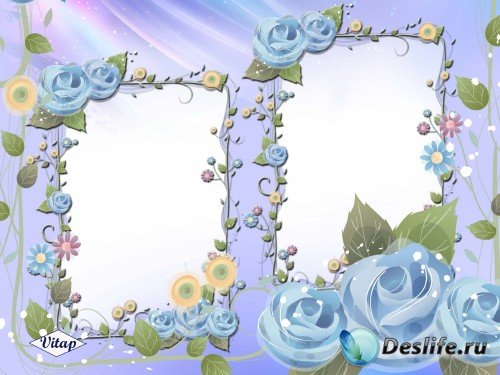 Рамка для фотошопа – Синие розы