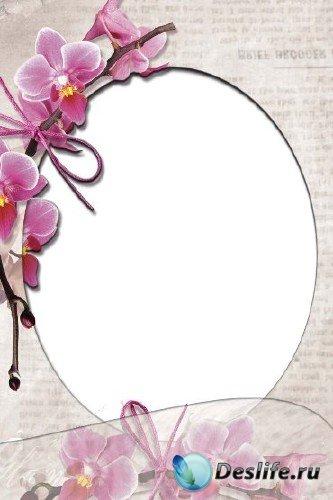 Рамка для фотошопа – Гламурные орхидеи