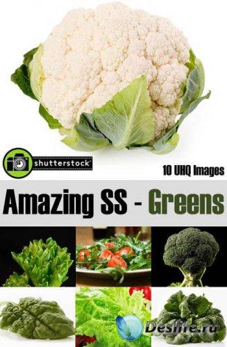 КлипАрты - Amazing SS – Greens