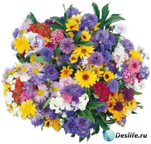 Прекрасные букеты цветов для фотошопа