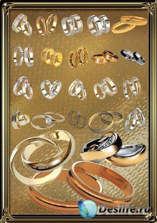 Клипарт - Золотые кольца