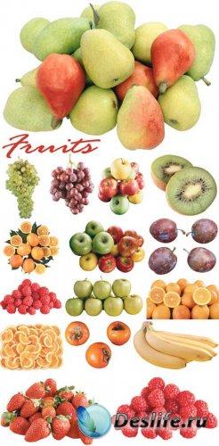 Fruits - Большой выбор фруктов
