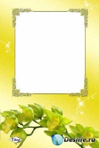 Рамка для фотошопа – Жёлтая орхидея