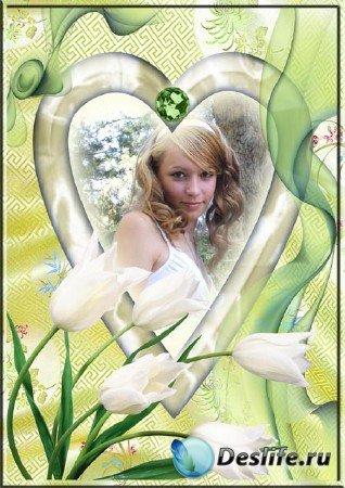 Фоторамка с белыми тюльпанами