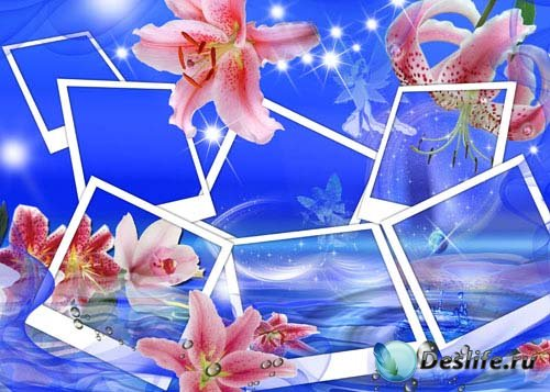 Рамка для фотошопа - Море лилий