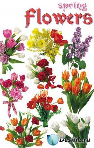 Весенние цветы - Spring flowers