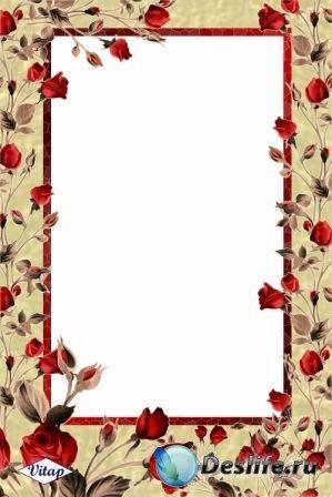 Рамка для фотошопа – Оранжевые лилии