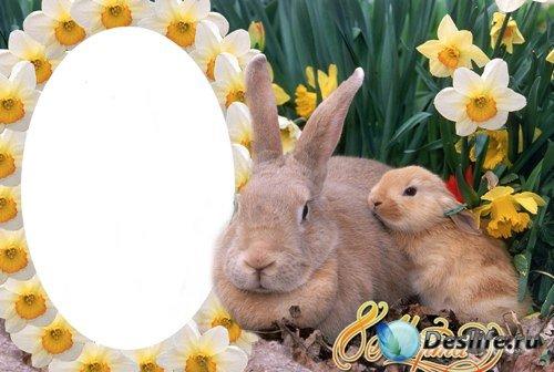 Рамка для фотошопа - Для мамочки к 8 марта