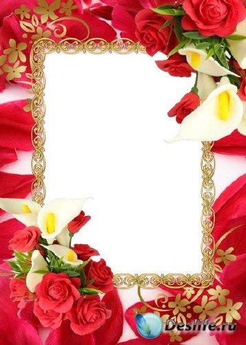 Рамка для фотошоп – Лепестки роз