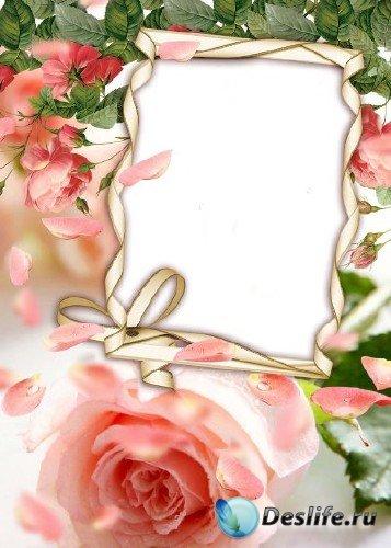 Рамка для фотошоп – Розовый аромат