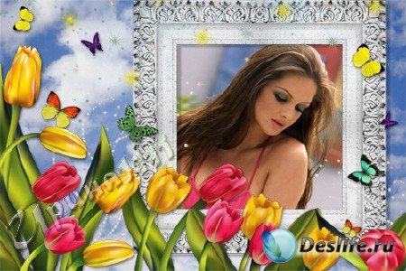Рамка для Photoshop - Тюльпаны